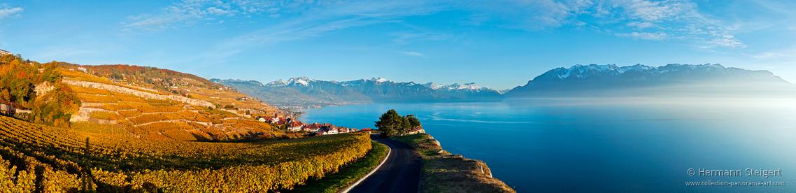Blick auf den Genfersee und die Weinberge