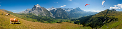 Blick vom First auf Grindelwald