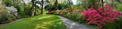 Bodnant Garden 1