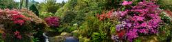 Bodnant Garden 3