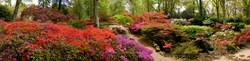 Exbury Gardens 5