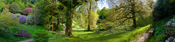 Glendurgan Garden 1