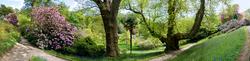 Glendurgan Garden 4