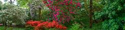 Leonardslee Gardens 1