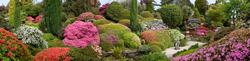 Leonardslee Gardens 3