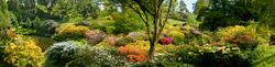 Leonardslee Gardens 6