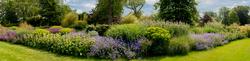 RHS Garden,Wisley 16