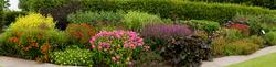 RHS Garden,Wisley 18