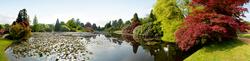 Sheffield Park 1