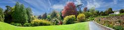 Trebah Garden 4