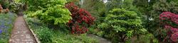 Trelissik Garden 2