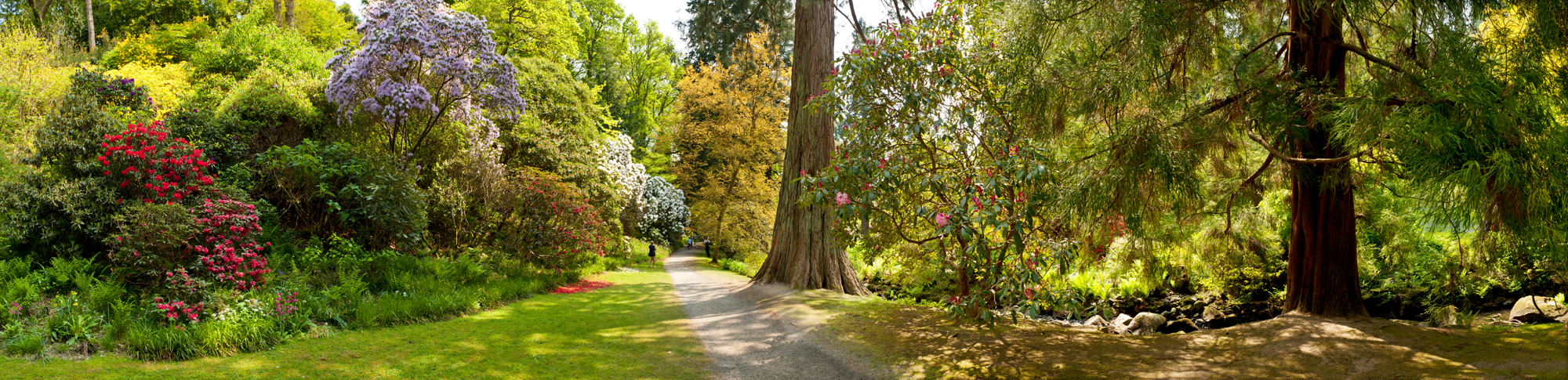 Bodnand garden collection panorama art for Garden images