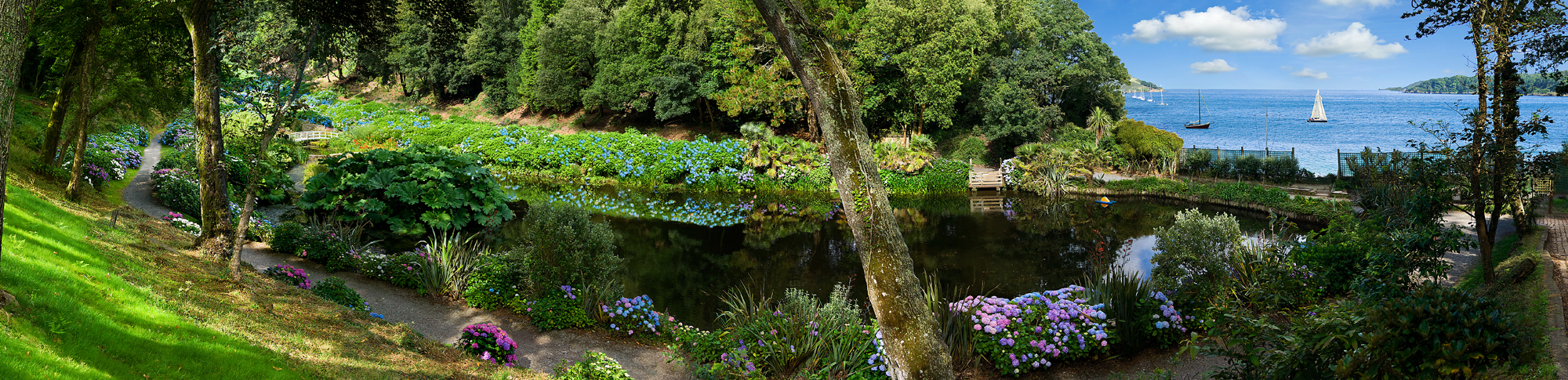 Trebah Garden Collection Panorama Art